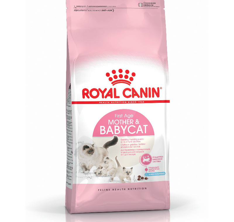 Royal Canin Baby Cat 34  4 Kg -